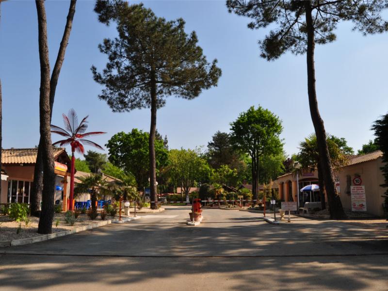 Vente mobil home saint hilaire de riez vend e terrain mobil home camping 85sth032 - Mediatheque saint hilaire de riez ...